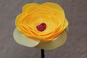 Cream/Yellow Poppy with Red